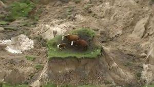 terremoto-sacude-a-nueva-zelanda1
